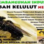 Seminar Pembangunan Industri Lebah Kelulut (BB)
