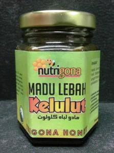 Nutrigona_Madu Lebah Kelulut